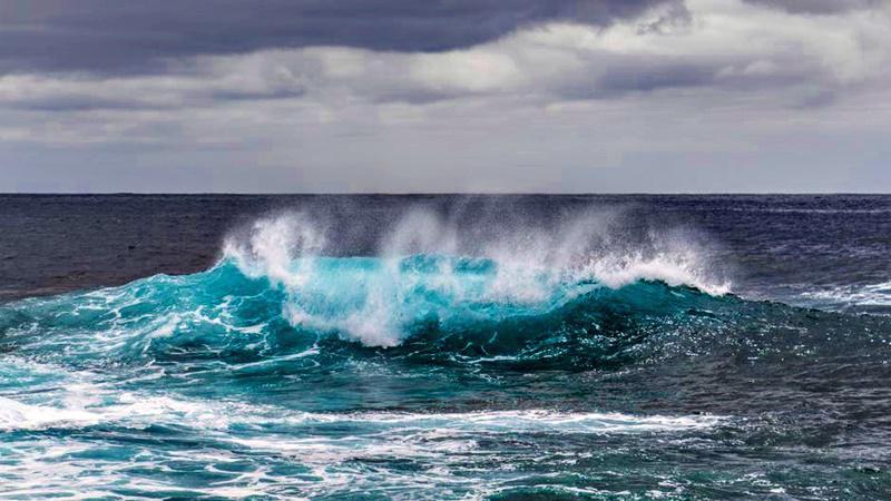 """Στις συνεχώς διευρυνόμενες """"νεκρές"""" θαλάσσιες ζώνες το οξυγόνο μειώνεται σε  βαθμό που πολλοί θαλάσσιοι οργανισμοί ασφυκτιούν και πεθαίνουν 4305c21246e"""