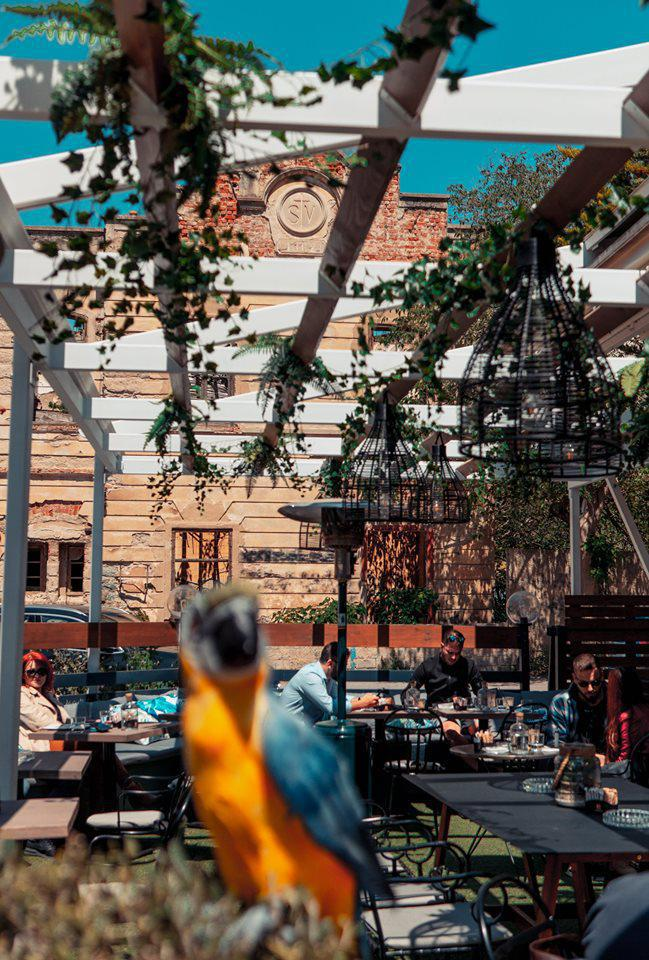 7 Σημεία Γαστρονομικών Απολαύσεων με Θέα σε Τοπόσημα της Θεσσαλονίκης, φωτογραφία-12